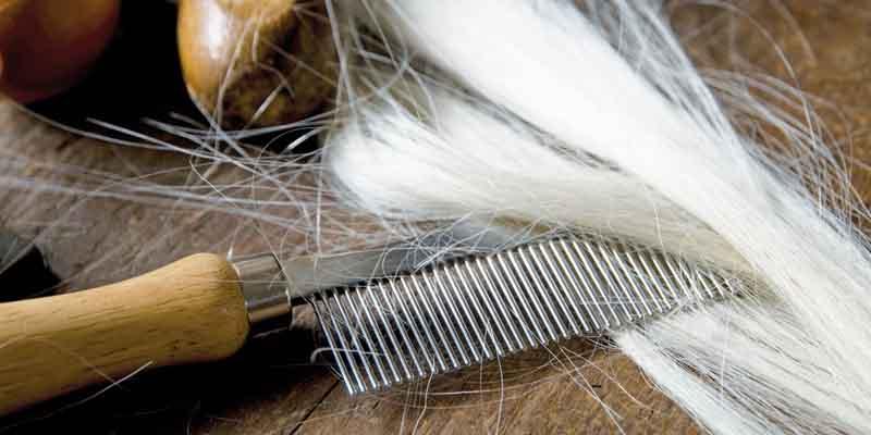 از یک برس نرم با الیاف طبیعی استفاده کنید.-درمان ریزش مو
